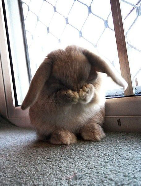 Go away! I'm hideous!